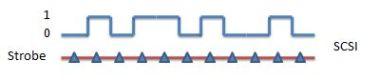 SCSI using strobe line