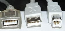 standard usb connectors
